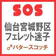 image_sos_070803.jpg